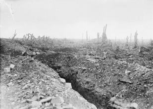 Shell Damaged Road to Bapaume